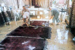 reisebericht aus peshawar teppich michel teppiche aus aller welt. Black Bedroom Furniture Sets. Home Design Ideas